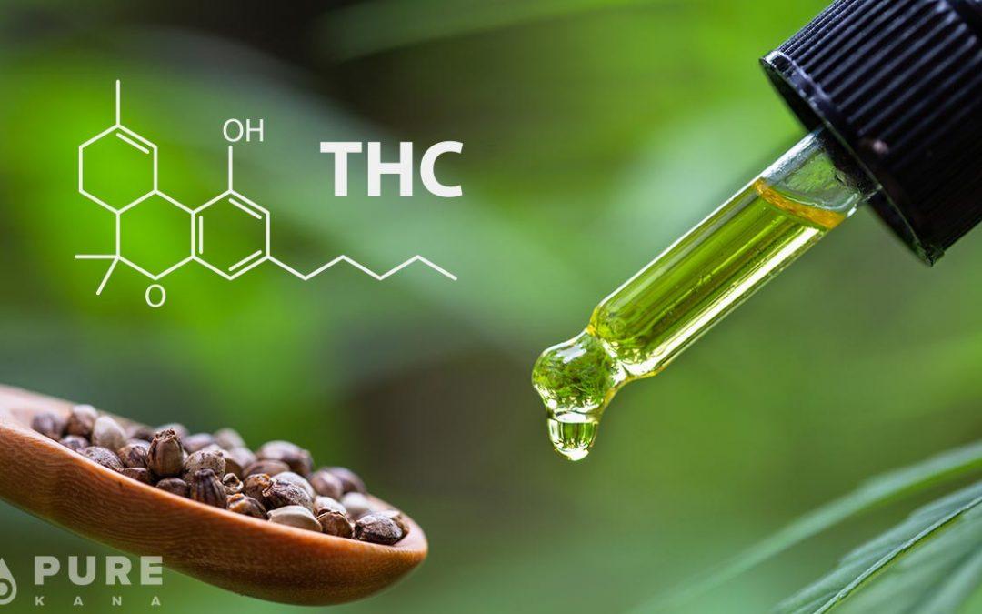 CBD OLEJ S THC: VŠETKO MUSÍŠ VEDIEŤ